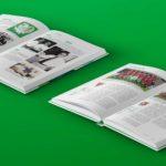 ofv ostschweizer fussballverband hannemann media ag inner-book web 02-1